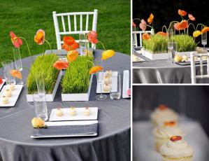 Do It Yourself Wheatgrass Centerpiece